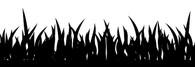 Grass Wall Decals