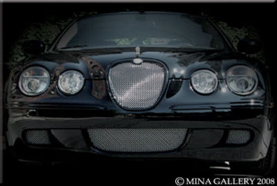 jaguar s type 2008 lower mesh grille grill set. Black Bedroom Furniture Sets. Home Design Ideas