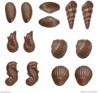 3D Seashells (with Recipe Card) - 54