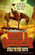 Steel to the South by Wayne D. Overholser (eBook)