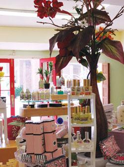 nova-mag-perfume-shot.jpg