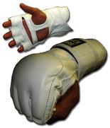 Ultimate Combat Gloves - No Logo
