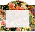 Labels:  Bouquet