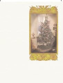 Labels:  Christmas Tree