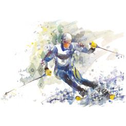 Skiers 1