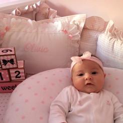 Pink Checker Baby Crib Set