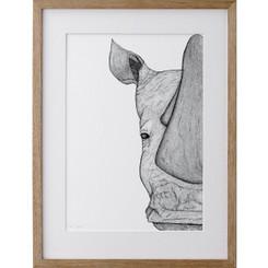 Reggie the Rhino