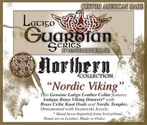 nordic-viking-tag.jpg