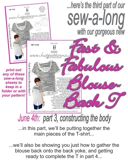 part-3-title-page-blouse-back-t-sew-a-long-june-3-2013.jpg