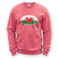 Welsh Flag Sweater