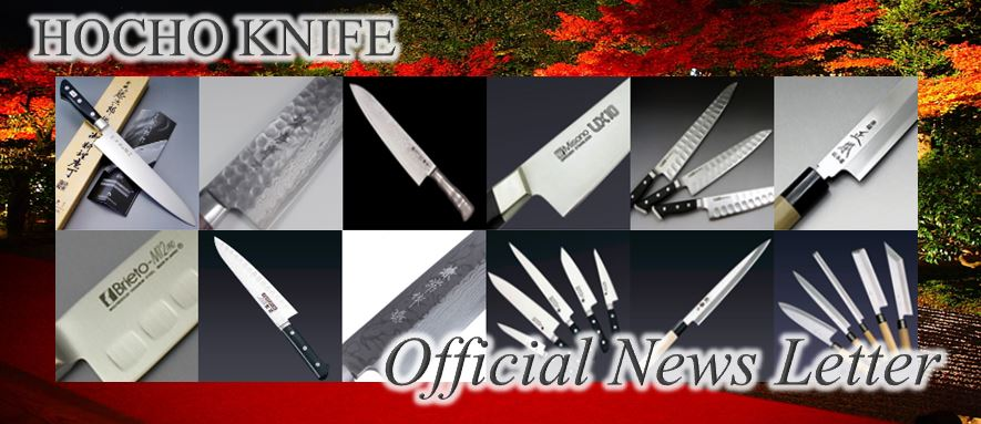 Hocho-Knife Official Newsletter