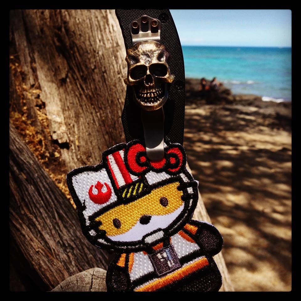 rebel-kitty-01a.jpg