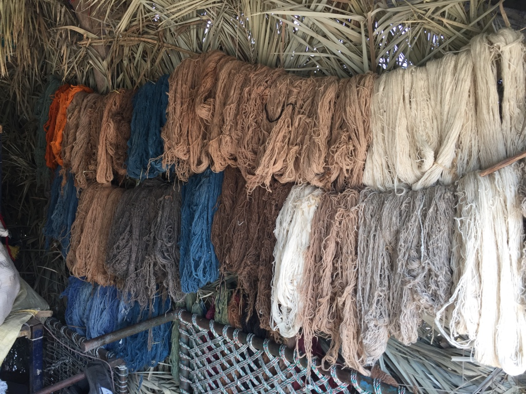 Shyamji and his group are passionate about natural dyes.  They use in ground indigo vats