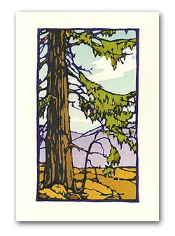 yoshiko-yamamoto-redwoods-print