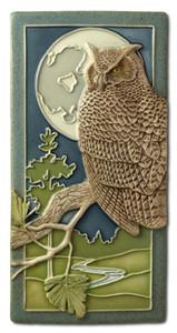 Night Owl - Great Horned Owl