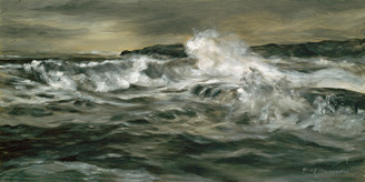 Wild Maine Sea