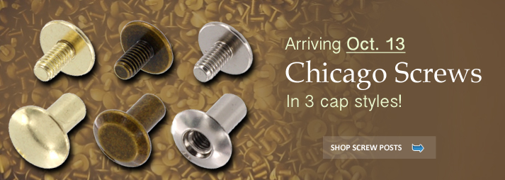 Solid Brass Chicago Screws