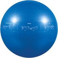 GOFIT GF-55PRO Professional Stability Ball (55cm; Blue) (R-GOFGF55PRO)