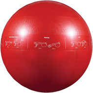 GOFIT GF-65PRO Professional Stability Ball (65cm; Red) (R-GOFGF65PRO)