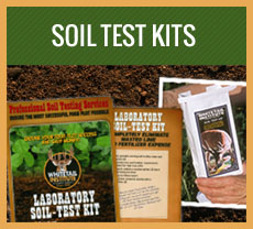 home-soiltest.jpg