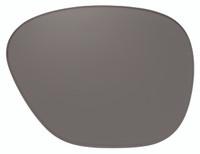 Ono's Matagorda Polarized Bi-Focal Replacement Lenses