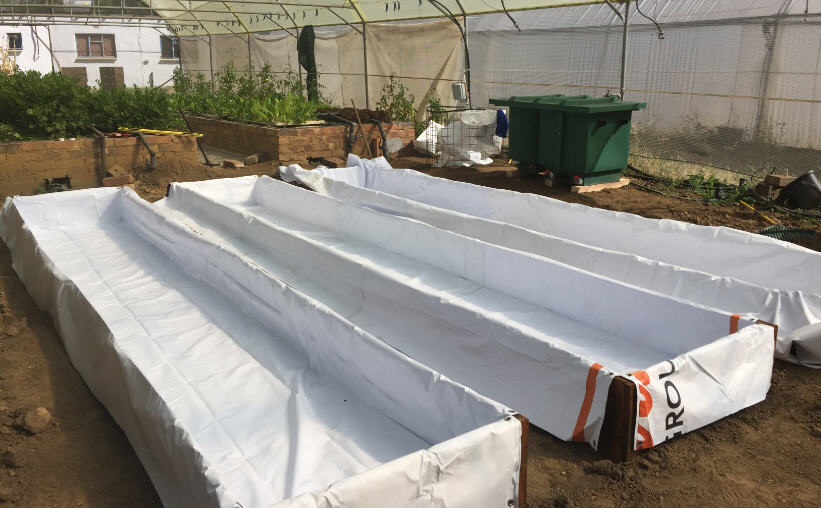 8mx8m open space converted into 740 plant aquaponics for Hydroponic bed liner