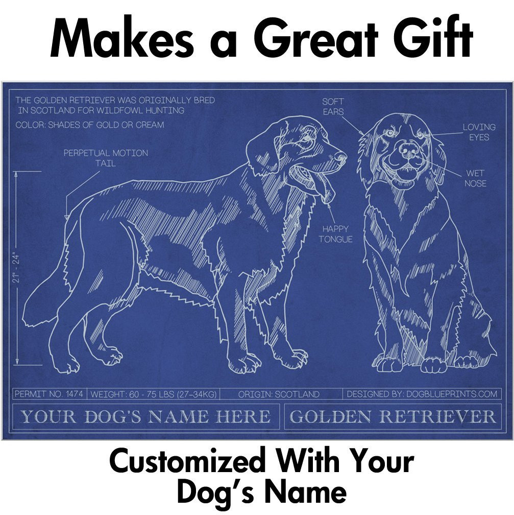 Golden retriever blueprint with personalized dog name makes a golden retriever blueprint with personalized dog name makes a great gift unframed art poster malvernweather Gallery