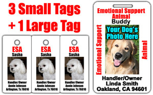 Three Small Emotional Support Animal IDs Plus One Lager ID