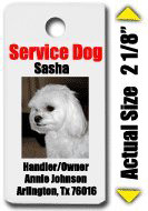 Small International Service Dog ID