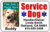 Horizontal Service Dog Vest ID