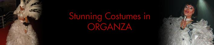 organza-costume2.jpg