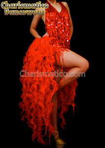 RED BURLESQUE TAIL Latin SALSA DANCE Dress
