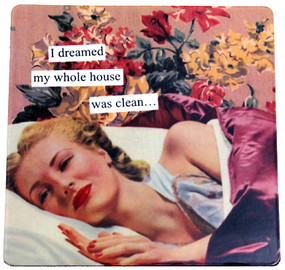 i dreamed my whole house was clean magnet