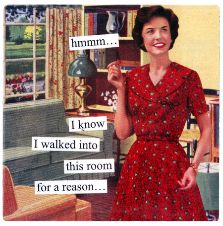 hmmmm i know i walked into this room for a reason  funny humorous hilarious retro vintage art refrigerator fridge magnet gift for girlfriend mom anne taintor forgetful memory