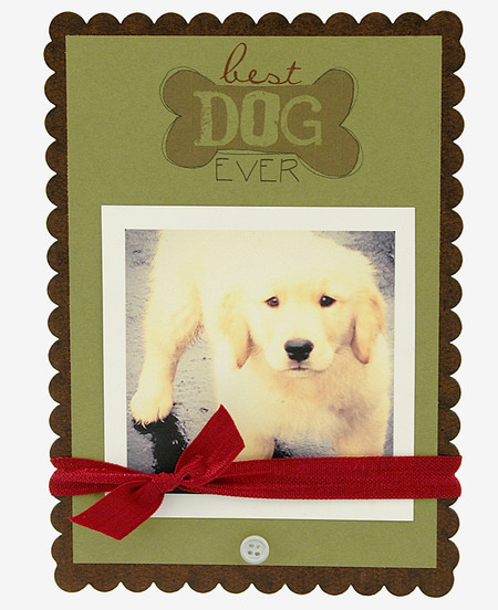 best dog ever handmade frame bone scallop great gift for pet owner - Dog Frame
