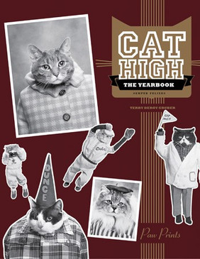 yearbook,parody,funny,humorous,cats,cat high,yearbook