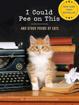 books,funny,cats,animals,poetry