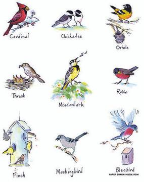 flour sack towel, birds