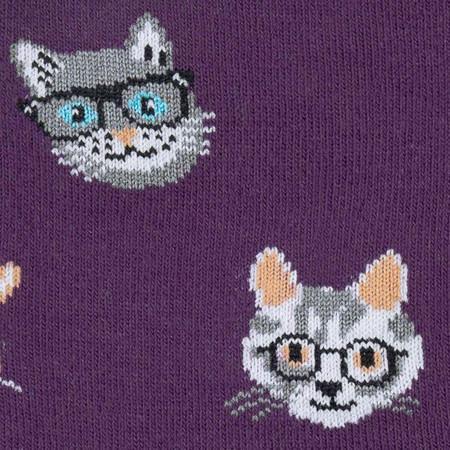 cats, smart, funny, socks