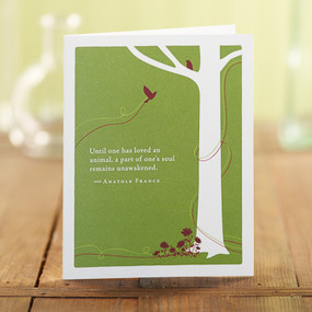 card, celebration, greeting cards, recycled material, sympathy, pet sympathy, pet loss