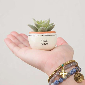 friends forever succulent, faux, tiny, home decor, garden accessories, inspirational, friendship