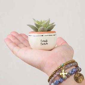 friends forever succulent, faux, tiny, home decor, garden accessories, inspirational, friendship