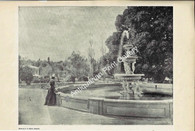 Botanic Gardens of Adelaide 1897 Original Antique Print