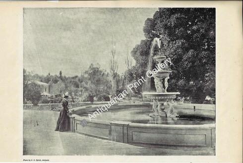 Botanic Gardens of Adelaide 1897 Original Antique Print