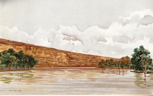 "Botany Geology Riverscape ""Cliff Scenery"" of the River Murray, after A.S.Murray, 1898"