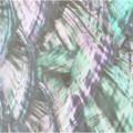 http://d3d71ba2asa5oz.cloudfront.net/12015324/images/cm0224404__41643.jpg