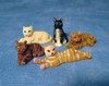 Set of Five Assorted Resin Cats