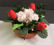 Red Tulips & White Roses in a Terracotta Pot