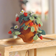 Strawberry Plant in a Pot
