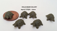 Set of Six Tiny Tortoises